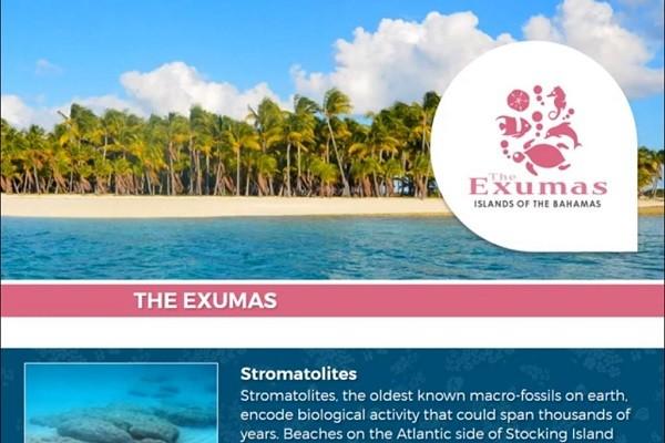 Exuma Coin Promo